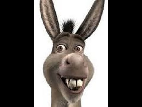 Donkey Says Shrek Sound Clip | Peal - Create Your Own