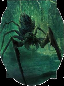 Uploads 2f1580957218335 y7hm2n9xb28 343caa8f3e5d1a729cd3b381a39e14ca 2fdire spider